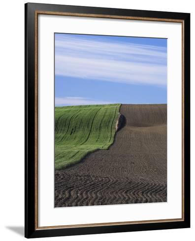 Wheat Field and Plowed Land-Frank Lukasseck-Framed Art Print