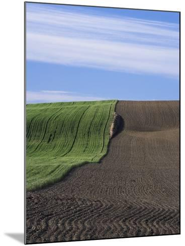 Wheat Field and Plowed Land-Frank Lukasseck-Mounted Photographic Print