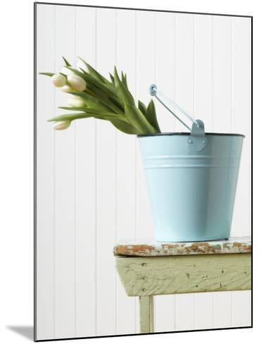 Bouquet of White Tulips in Bucket--Mounted Photographic Print