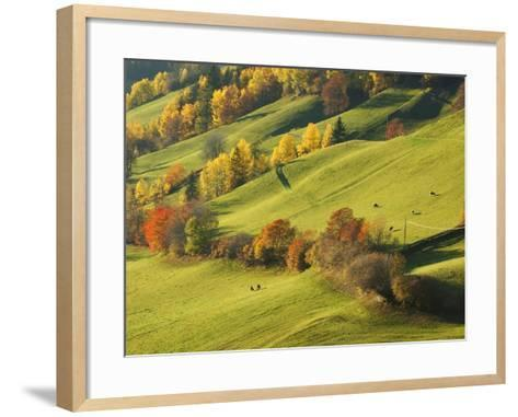 Pastures in St. Magdalena-Sergio Pitamitz-Framed Art Print