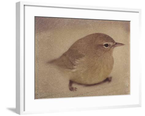 Young Goldfinch-Jennifer Kennard-Framed Art Print