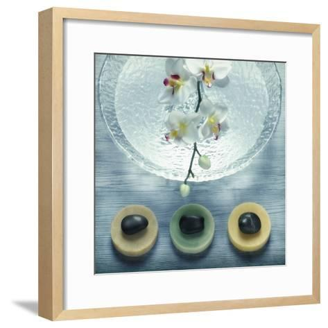 Bowl of Water and Soaps--Framed Art Print