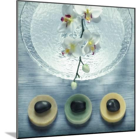 Bowl of Water and Soaps--Mounted Photographic Print