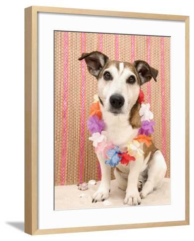 Dog with Lei-Ursula Klawitter-Framed Art Print