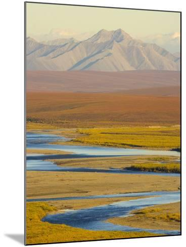 Mountains and Winding River in Tundra Valley-John Eastcott & Yva Momatiuk-Mounted Photographic Print
