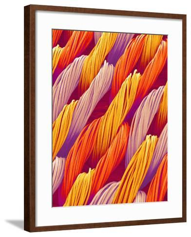 Cloth of a Brassiere Strap-Micro Discovery-Framed Art Print