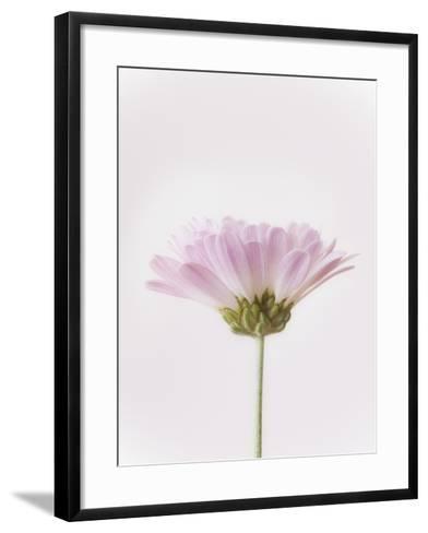 Flowers-Robert Llewellyn-Framed Art Print