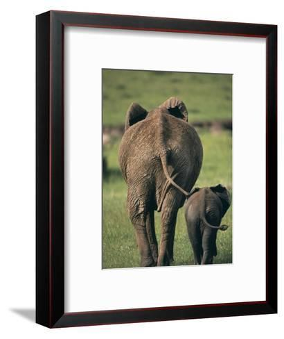 Adult Elephant and Baby--Framed Art Print