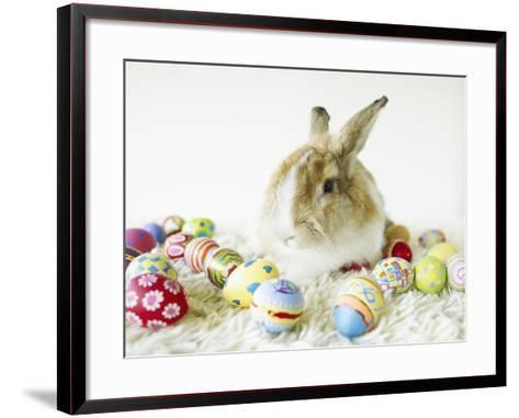 Bunny Rabbit Sitting Among Easter Eggs--Framed Art Print