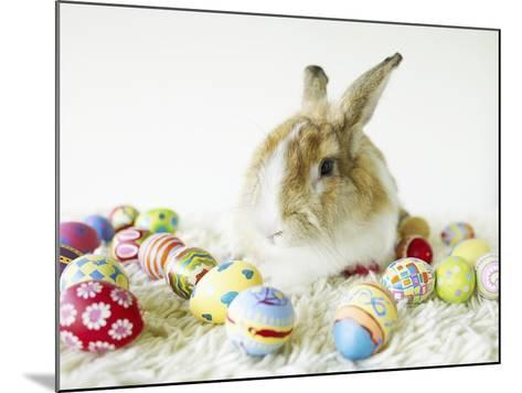 Bunny Rabbit Sitting Among Easter Eggs--Mounted Photographic Print