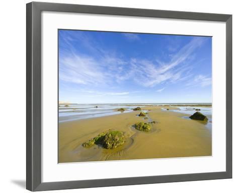 Sandy Beach at Low Tide, Valdez Peninsula-John Eastcott & Yva Momatiuk-Framed Art Print