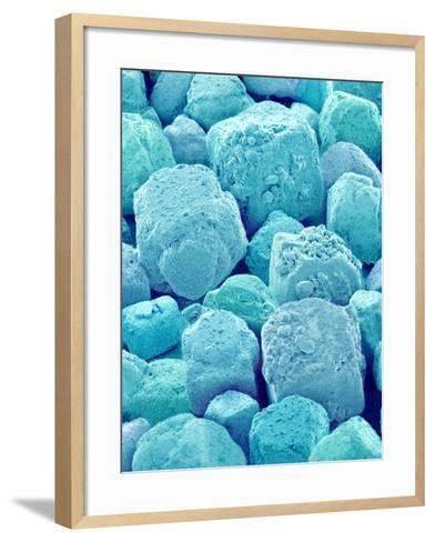 Table Salt-Micro Discovery-Framed Art Print