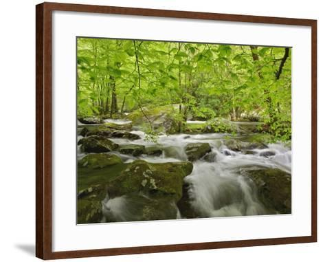 Middle Prong of the Little River-William Manning-Framed Art Print