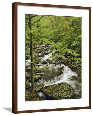 Middle Prong of the Little Pigeon River Cascading over Rocks-William Manning-Framed Art Print