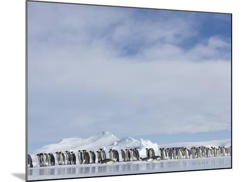 Row of Emperor Penguins in Antarctica-Paul Souders-Mounted Photographic Print