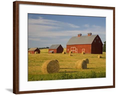 Barns and Hay Bales in Field-Darrell Gulin-Framed Art Print