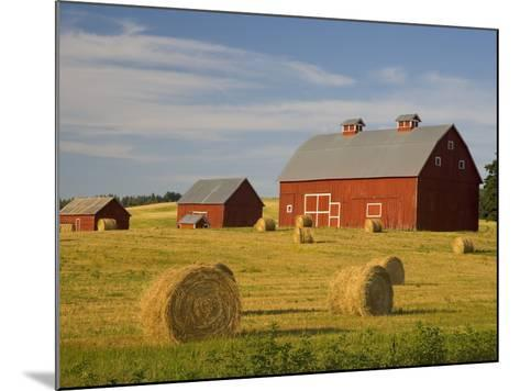 Barns and Hay Bales in Field-Darrell Gulin-Mounted Photographic Print