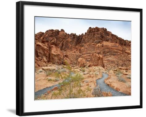 Rural Trail Through Desert-Beathan-Framed Art Print