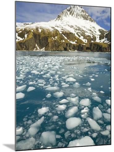 Ice Chunks From Twitcher Glacier Below the Salvesen Range-John Eastcott & Yva Momatiuk-Mounted Photographic Print
