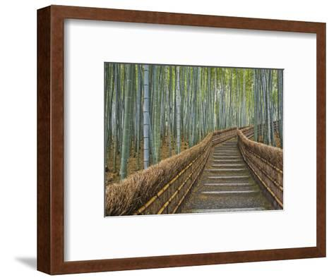 Bamboo Lined Path at Adashino Nembutsu-ji Temple-Rudy Sulgan-Framed Art Print