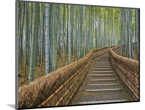 Bamboo Lined Path at Adashino Nembutsu-ji Temple-Rudy Sulgan-Mounted Photographic Print