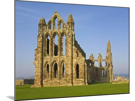 Ruins of Whitby Abbey in North Yorkshire-Paul Thompson-Mounted Photographic Print