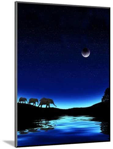 Three Elephants Walking Past Water-Mike Agliolo-Mounted Photographic Print