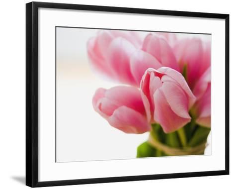 Pink tulips-Ada Summer-Framed Art Print
