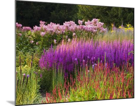 Trentham Gardens-Clive Nichols-Mounted Photographic Print