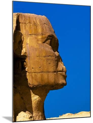 Detail of Great Sphinx at Giza-Blaine Harrington-Mounted Photographic Print