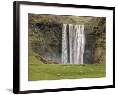 Skogarfoss with grazing sheep--Framed Art Print