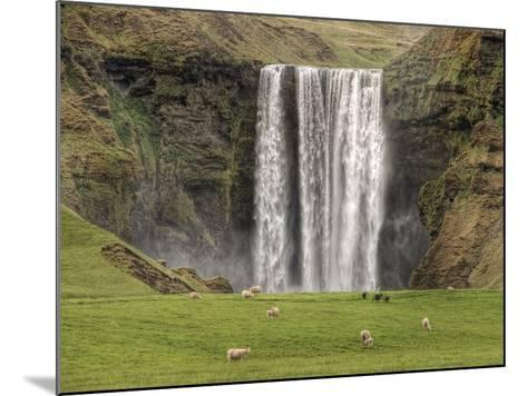 Skogarfoss with grazing sheep--Mounted Photographic Print