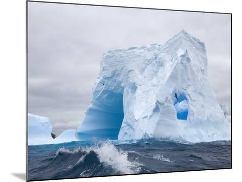 Blue Iceberg Sculpted by Waves and Southern Giant Petrel in Flight-John Eastcott & Yva Momatiuk-Mounted Photographic Print
