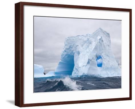 Blue Iceberg Sculpted by Waves and Southern Giant Petrel in Flight-John Eastcott & Yva Momatiuk-Framed Art Print