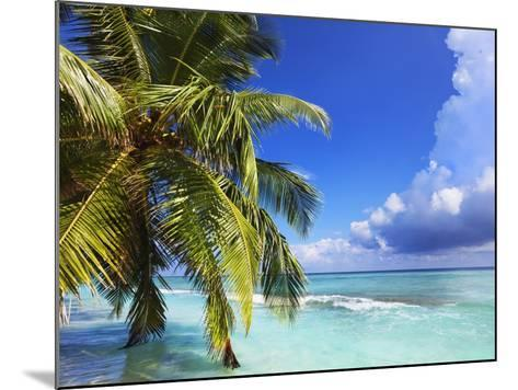 Beach at Soneva Fushi Resort in the Baa Atoll-Frank Krahmer-Mounted Photographic Print