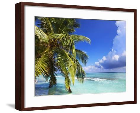 Beach at Soneva Fushi Resort in the Baa Atoll-Frank Krahmer-Framed Art Print
