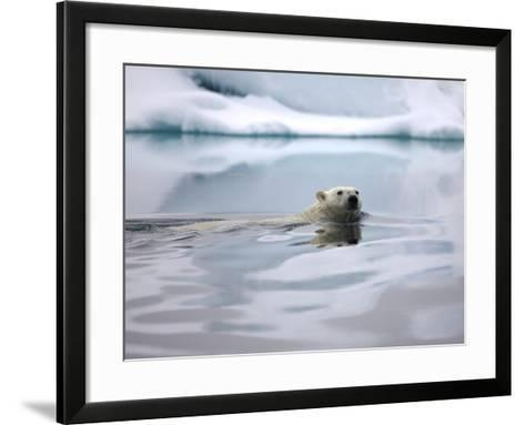 Polar Bear Swimming in Svalbard Islands-Paul Souders-Framed Art Print