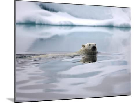 Polar Bear Swimming in Svalbard Islands-Paul Souders-Mounted Photographic Print