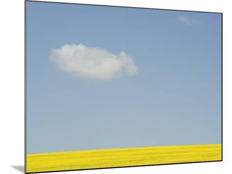 Wiltshire landscape-John Harper-Mounted Photographic Print