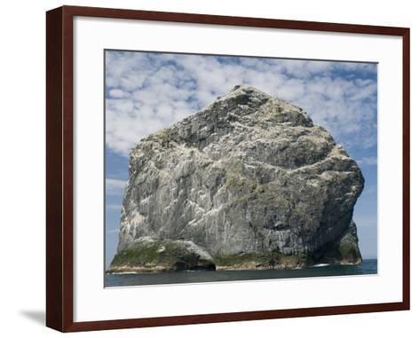 Northern gannet nesting colony atop Stac Lee-Kevin Schafer-Framed Art Print