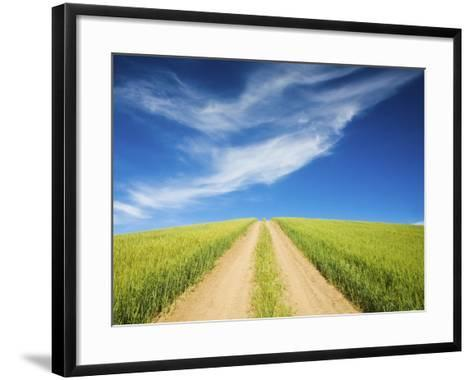 Country Back Road Through Spring Wheat Fields-Terry Eggers-Framed Art Print