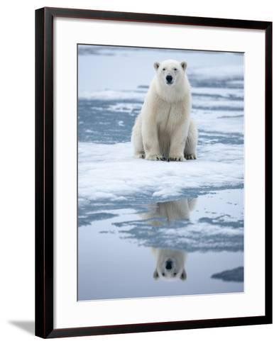 Polar Bear on ice-Paul Souders-Framed Art Print