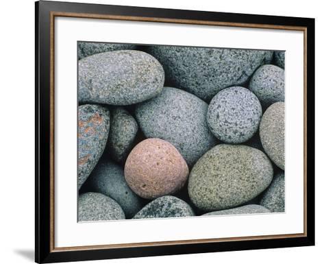 Detail of Pebbles on Long Island, Nova Scotia, Canada-Don Johnston-Framed Art Print