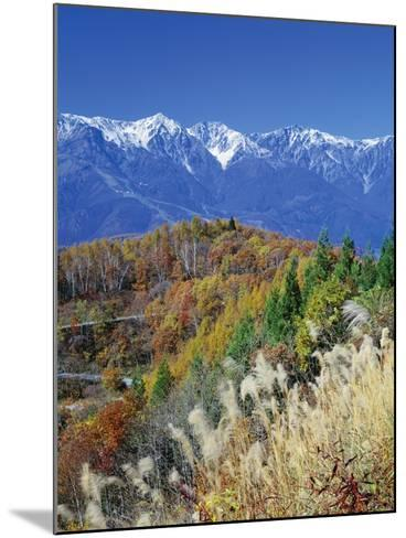 Mountain range and autumn foliage, Hakuma Miyama, Nagano Prefecture, Japan--Mounted Photographic Print