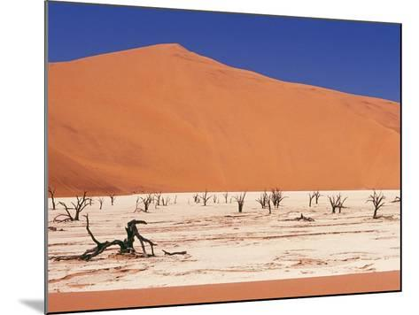 Dead Tree Skeletons and Cracked Clay Surrounded by Sand Dunes, Dead Vlei, Namib-Naukluft National P-Garry Black-Mounted Photographic Print