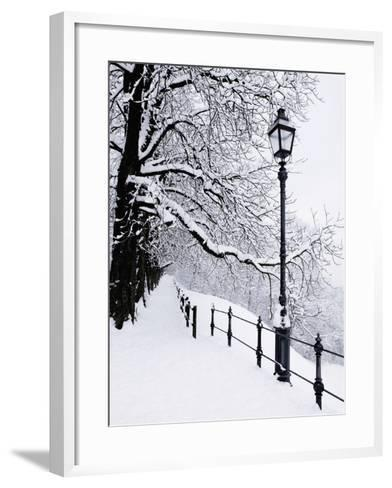 Trees and lamp post in snow-Bruno Ehrs-Framed Art Print