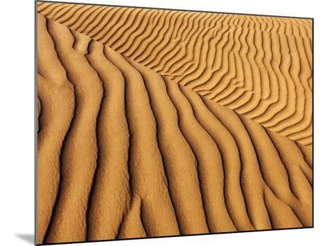 Dune structures-Frank Krahmer-Mounted Photographic Print