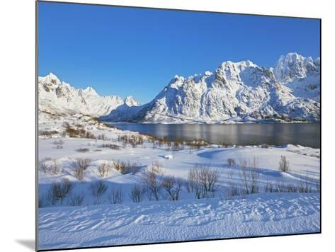 Coastal mountains in the Lofoten Islands in new snow-Frank Krahmer-Mounted Photographic Print