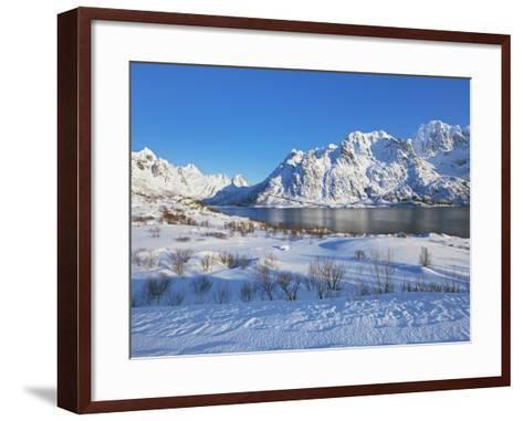 Coastal mountains in the Lofoten Islands in new snow-Frank Krahmer-Framed Art Print