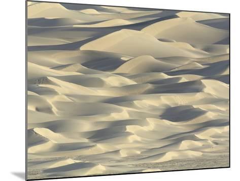 Sand dunes in Death Valley National Park-John Eastcott & Yva Momatiuk-Mounted Photographic Print
